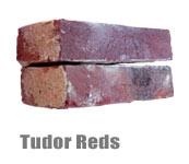 Tudor Reds